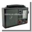 REPRODUCTOR DE RADIO FM AM SW1-8 10 BANDAS USB