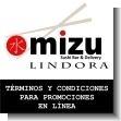 Terminos y Condiciones para Promociones en Linea